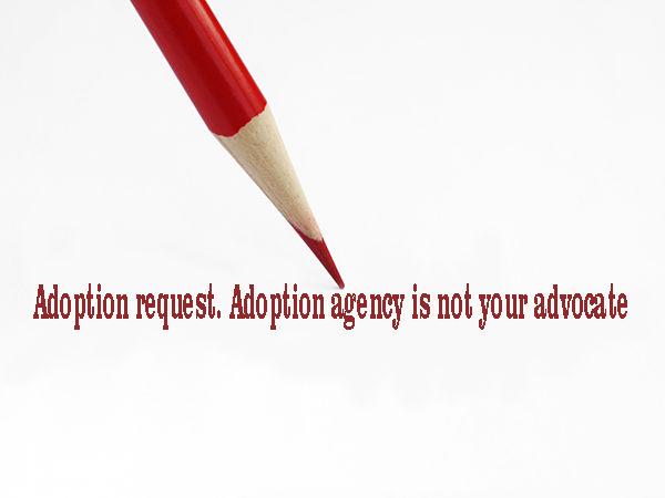 Adoption Legal Services