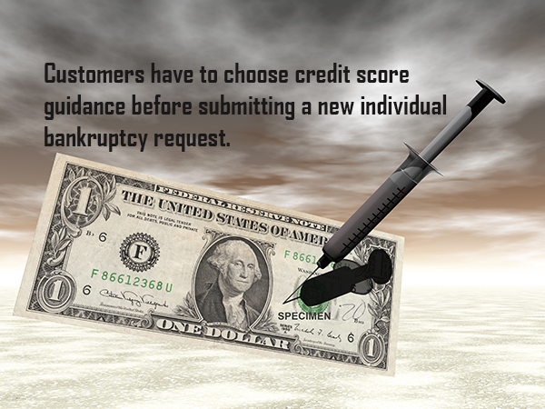 Bankruptcy filling without an attorney