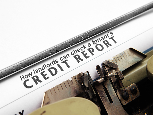 How landlords can check a tenant's credit report?