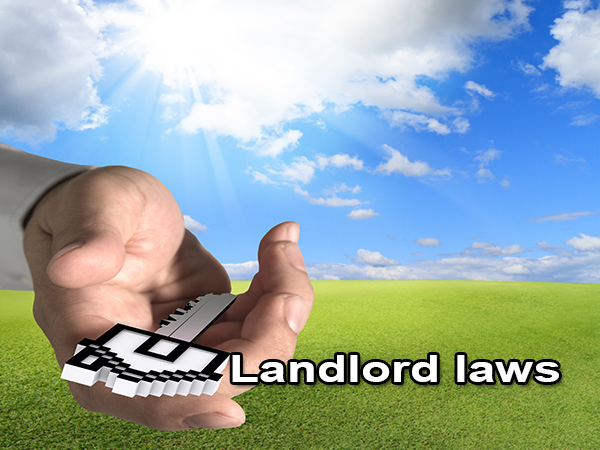 Basic landlord laws in US
