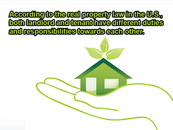 Landlord and Tenants: Roles and responsibilities