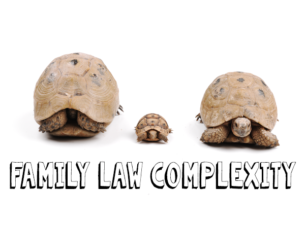 Different Legal Issues in Family Law Practice
