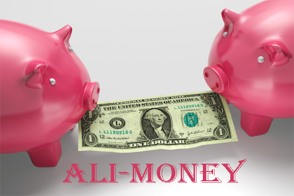 Legal Aid For Alimony