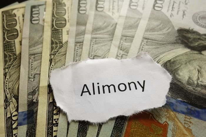 Alimony Legal Issue?