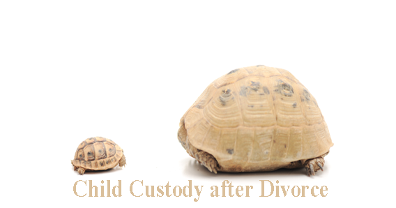 Looking For Divorce And Custody